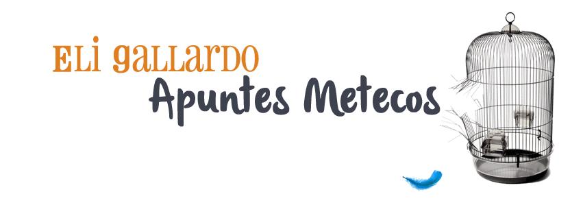 Eli Gallardo Apuntes Metecos banner
